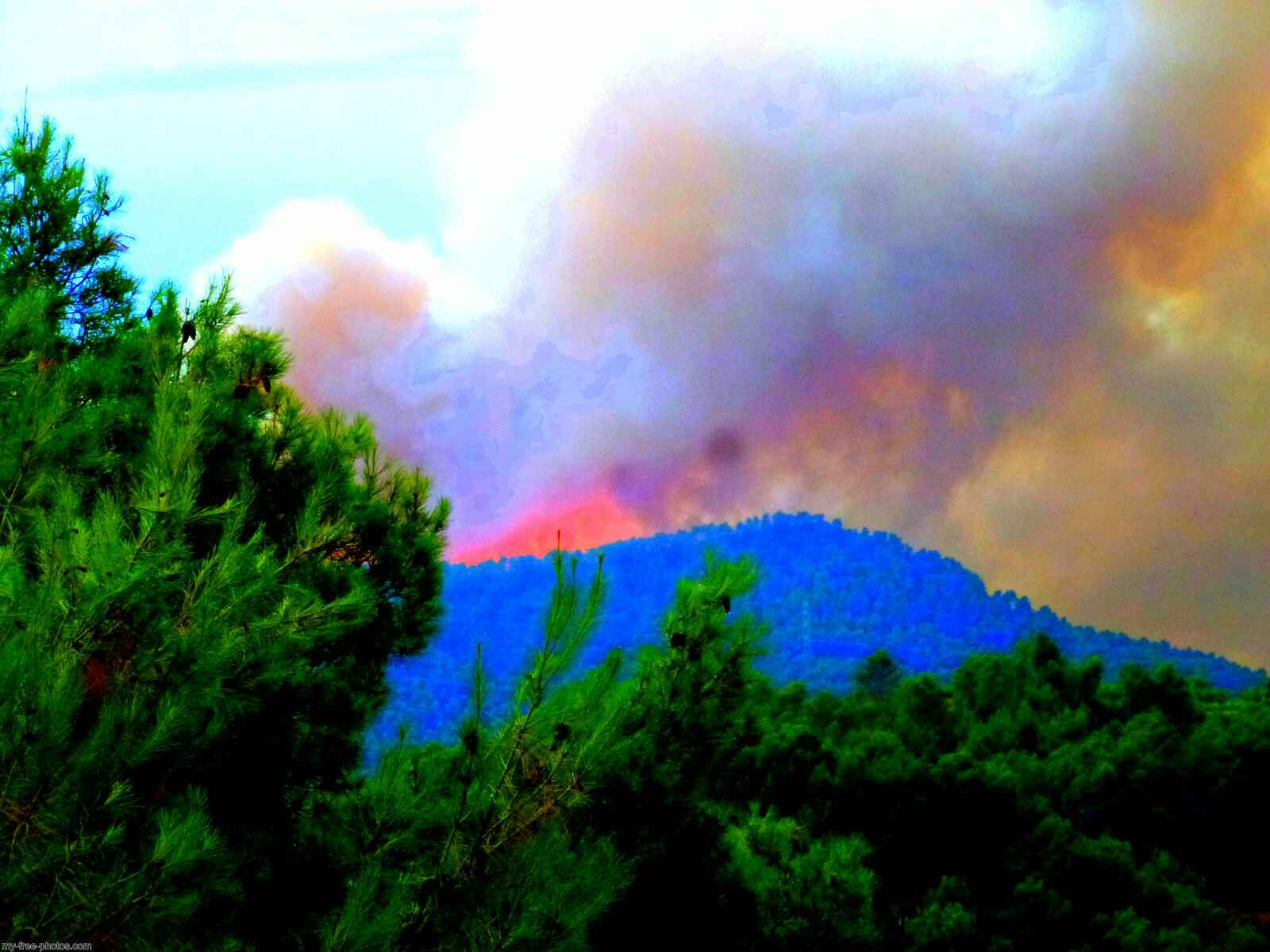 Spain, forest fire