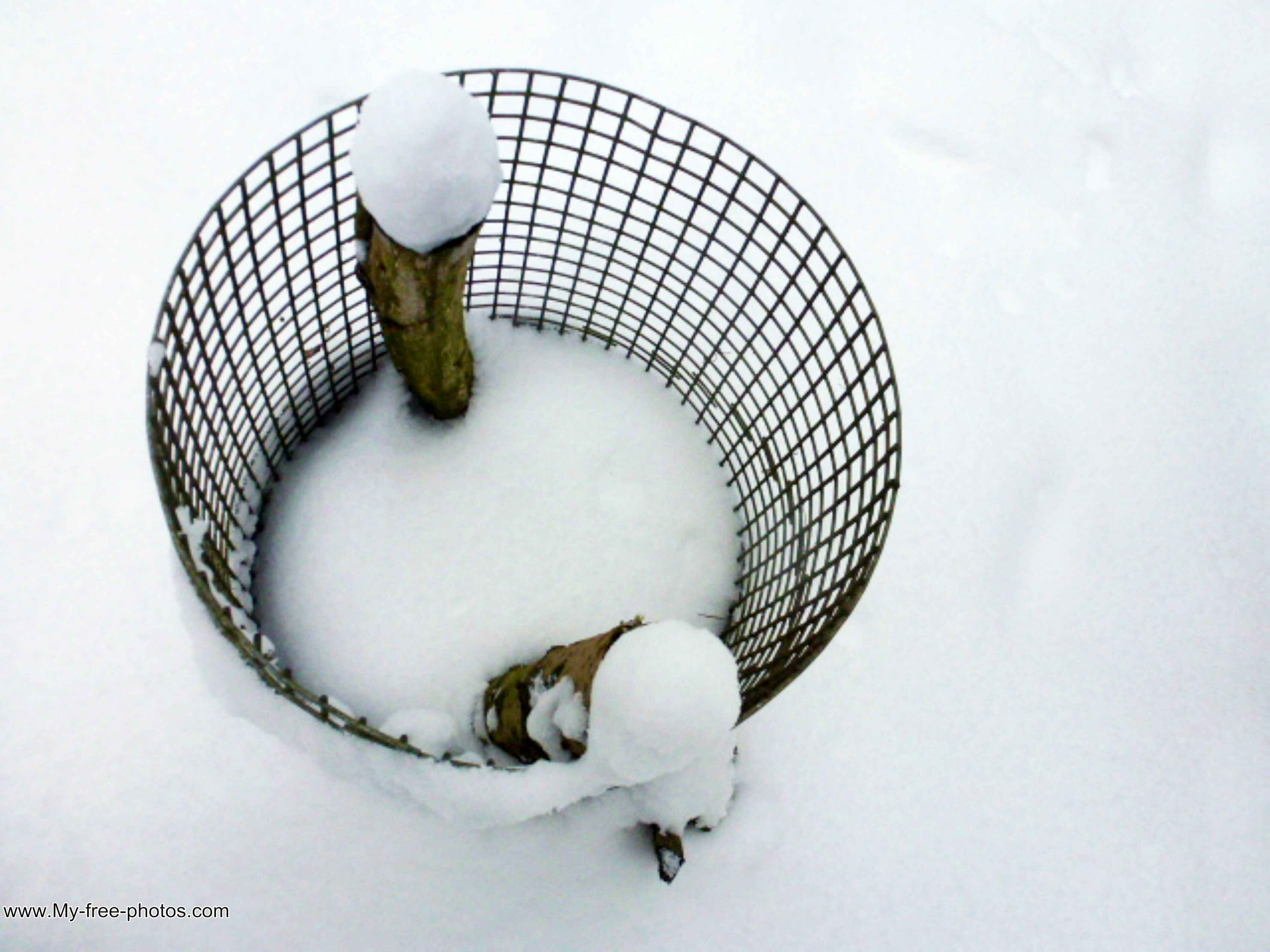 basket in snow